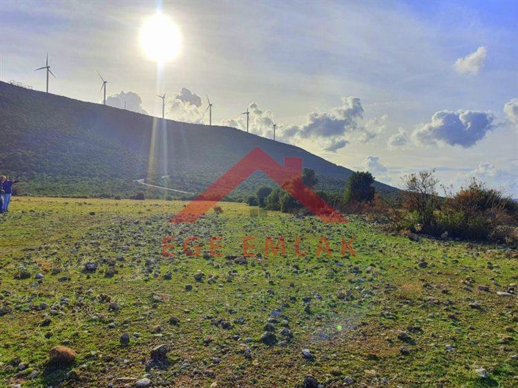 Didim'de Bafa Gölüne yakın imarlı arsa, yazlık ev inşasına uygun